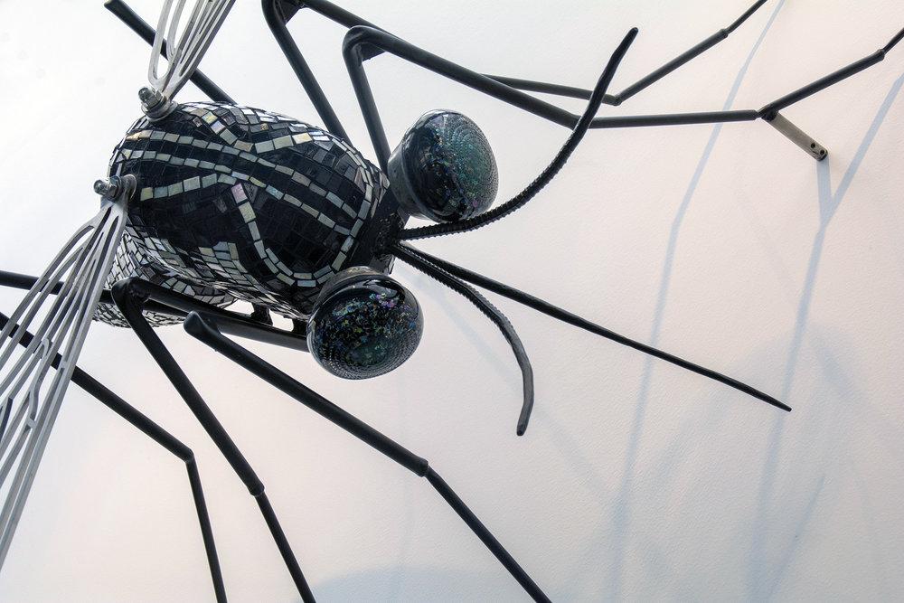 Black Mosquito.jpg