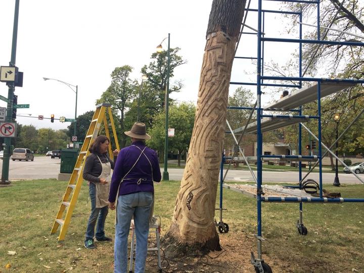 treeproject4-720x540.jpg