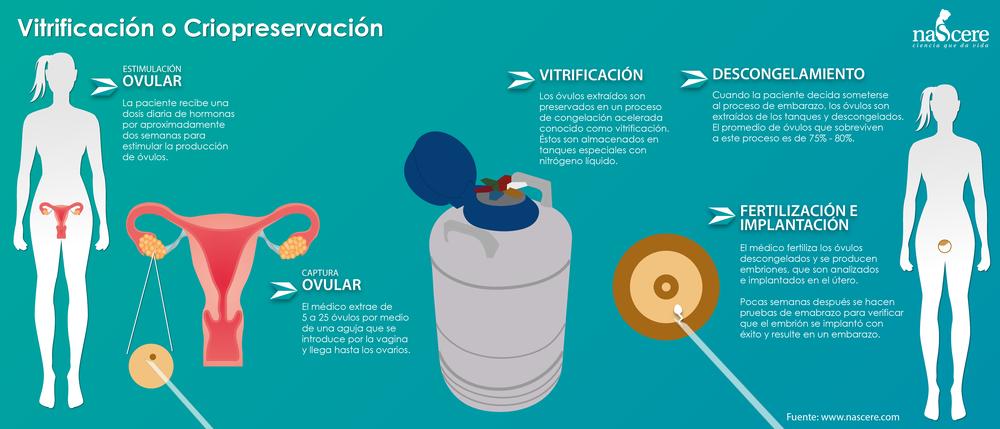 Vitrificación