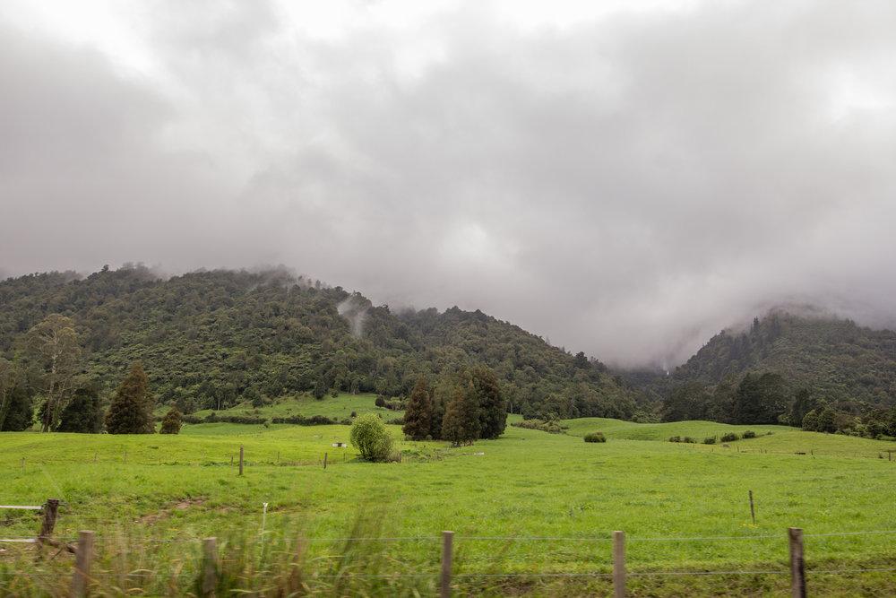 NewZealand-8588.jpg