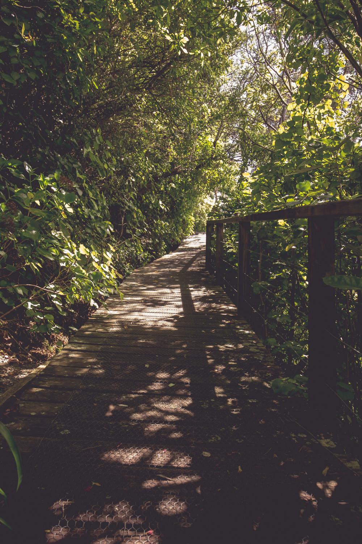 NewZealand-9148.jpg