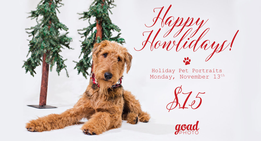 HappyHowlidays2017-2ndday.jpg