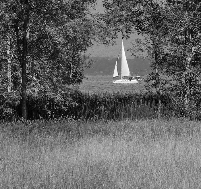Sailing by Shelburne Farms