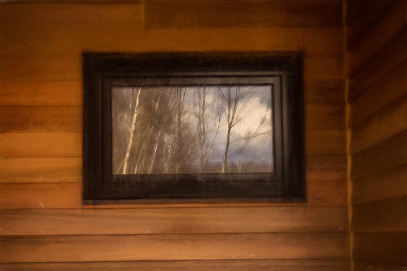 Birch and Cedar