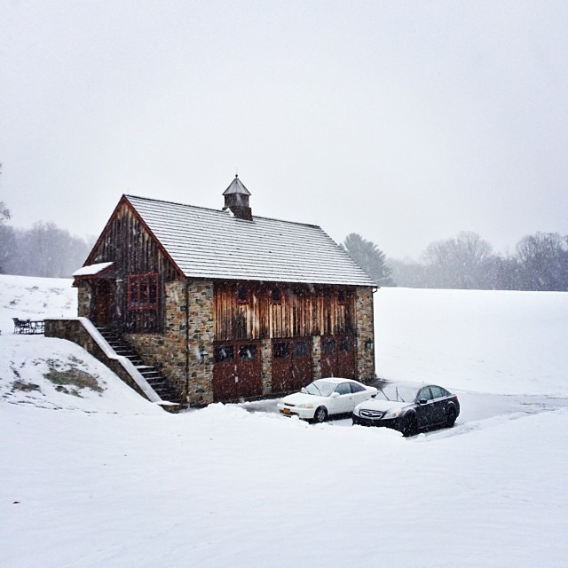 @side_saddle snow sessions #alliteration #thefarmstudio