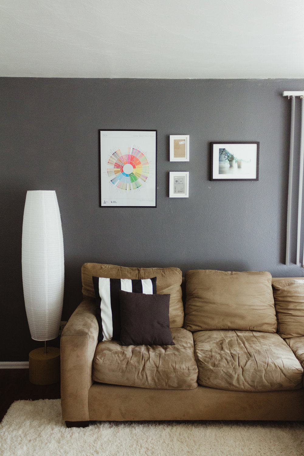 Lamp- Wal Mart  Couch- Lucky find Pillows- IKEA and H&M  Wall Art- SCAA and Christian P Anderson Photography
