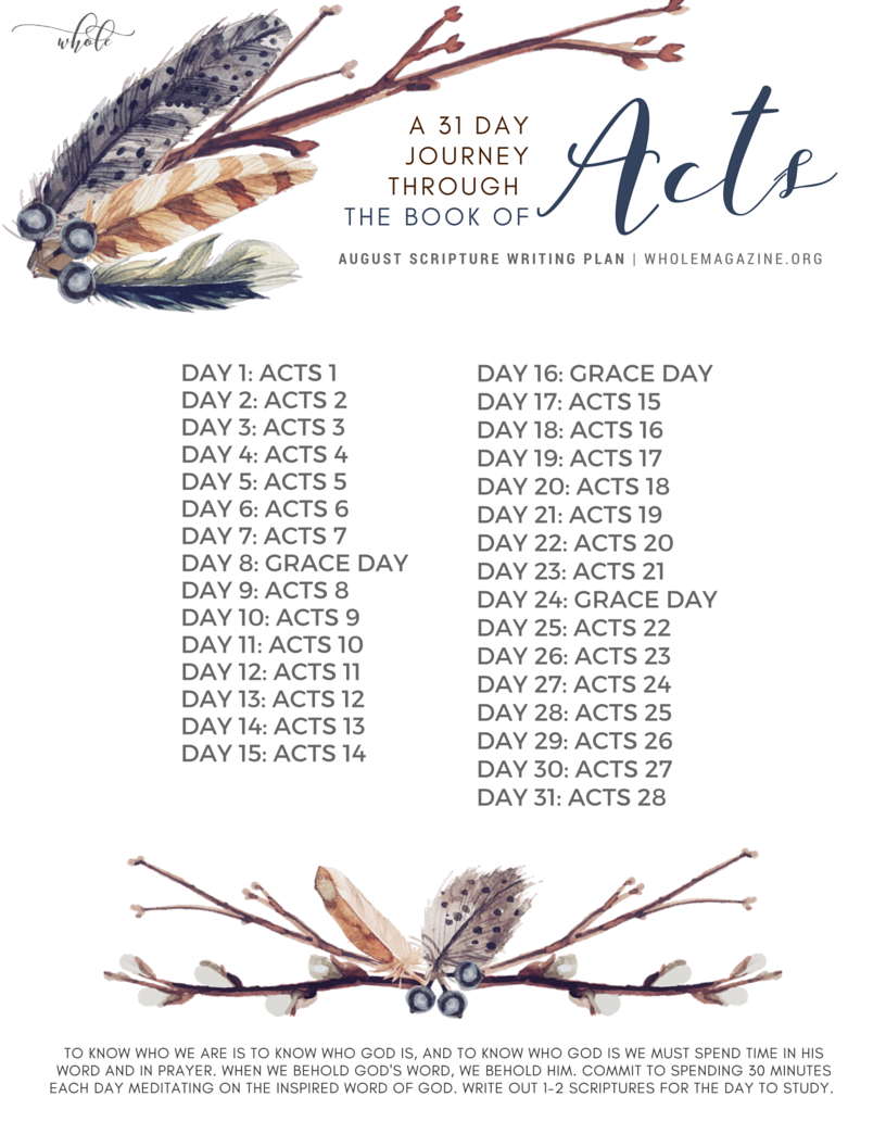 August Scripture Writing 31 Day Journey Through The Book