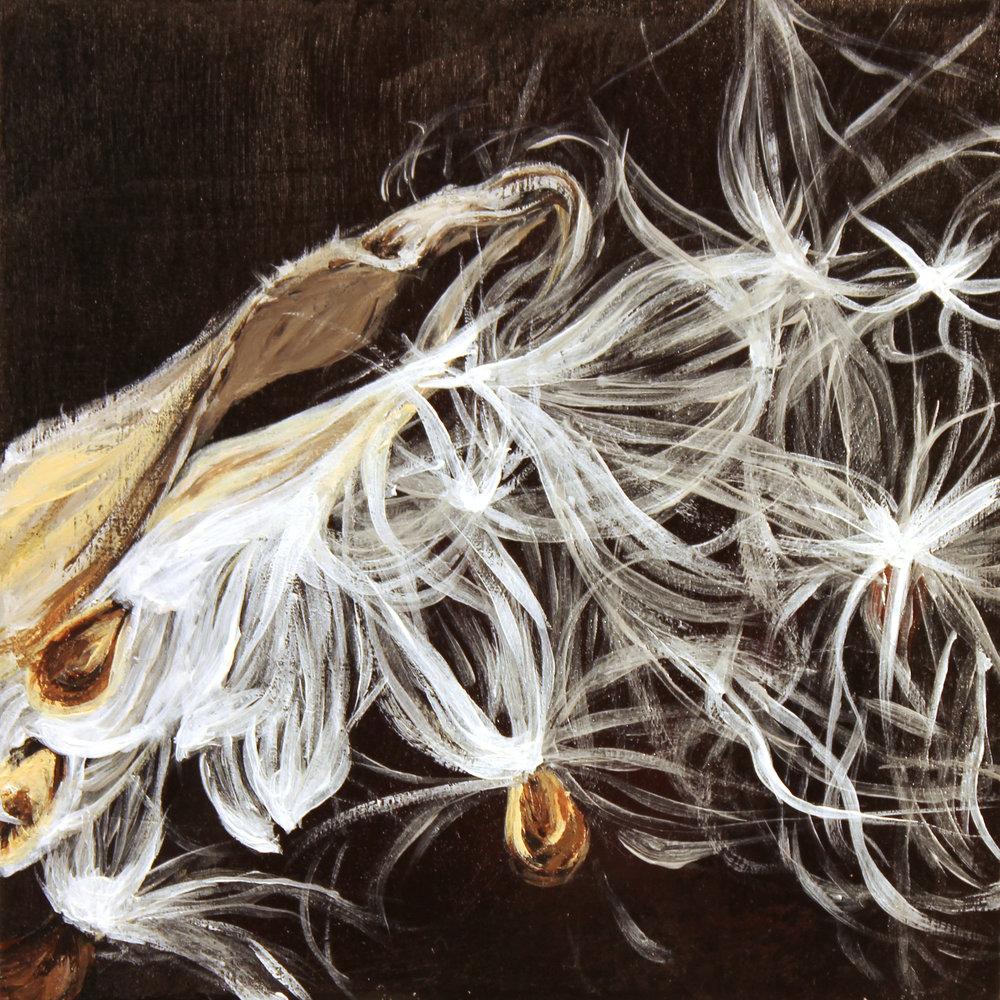 No. 13 (Milkweed)