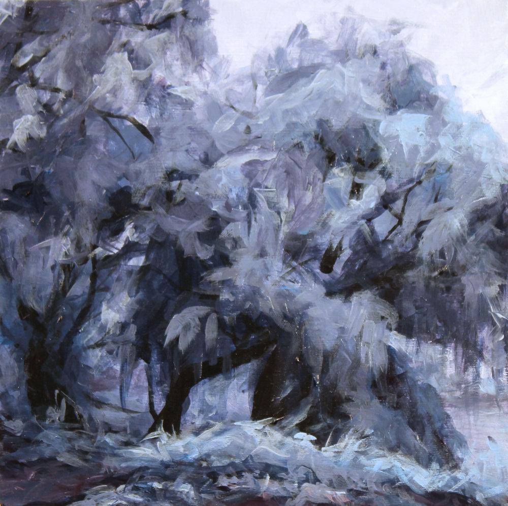 No. 21 (Ice trees)