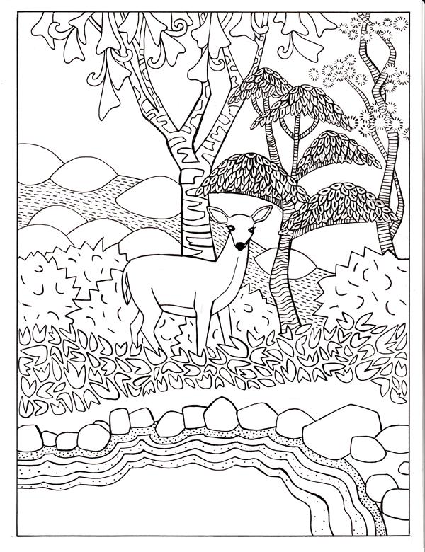 Deer On Shore
