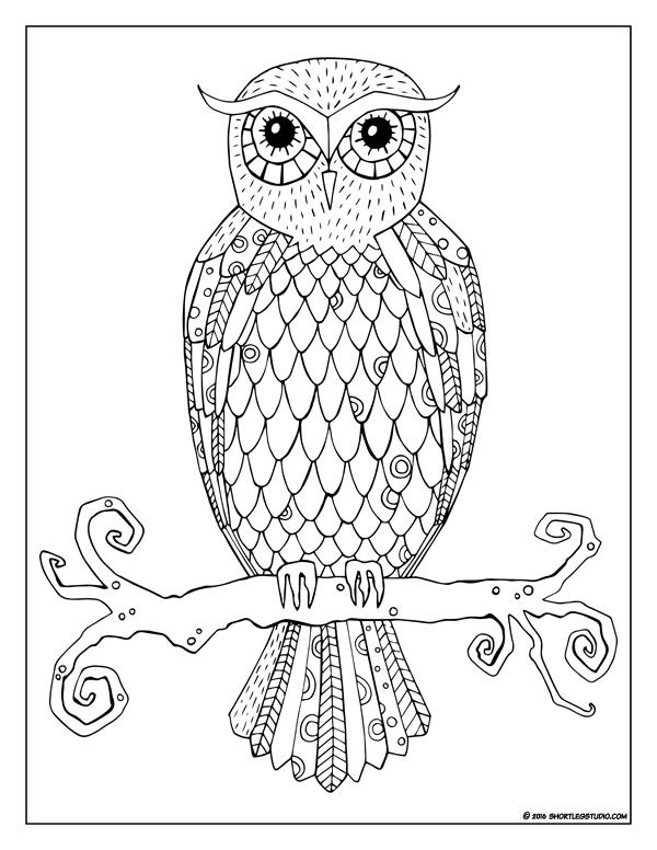Flora Fauna Coloring Sheets Short Leg Studio
