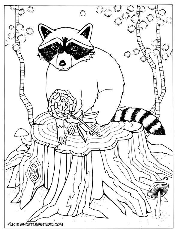 Racoon with Flower
