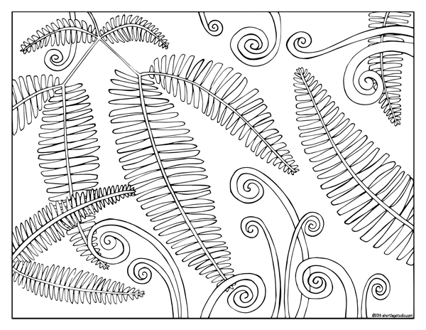 Hawaiian Fern Fronds
