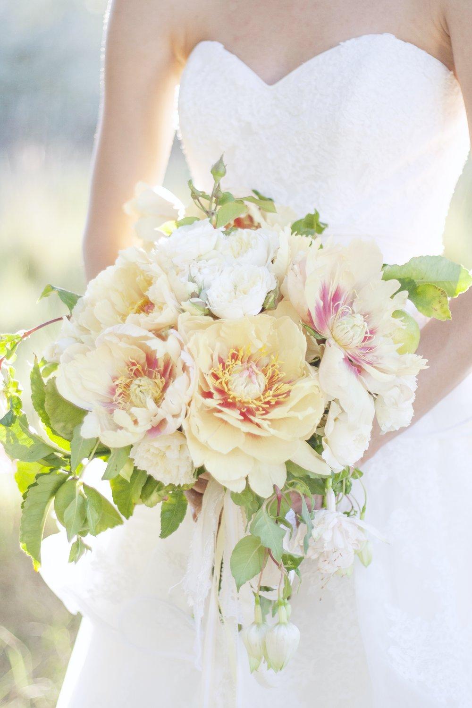 Bouquets           Images by Becca Lea, Jennifer Hayward, Stephanie Mballo, & Jaclyn Davis Photography