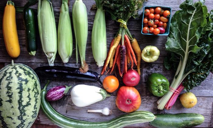 Harvest 12.jpg
