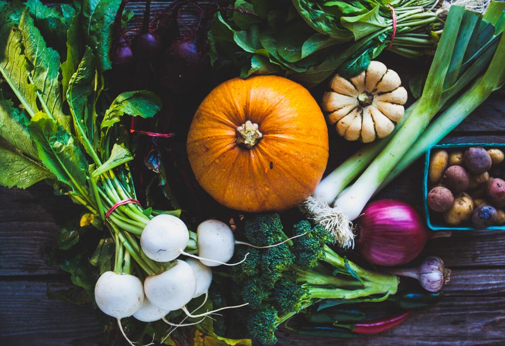 Harvest 20.jpg