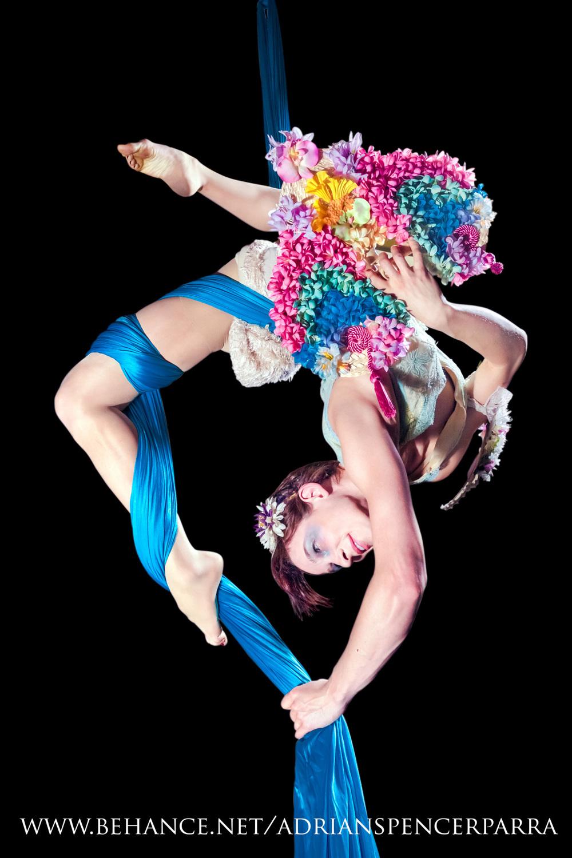 danceoftheelves.jpg