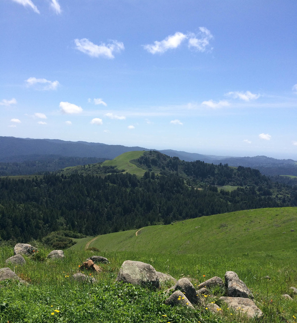 09.12 Russian Ridge_web.jpg