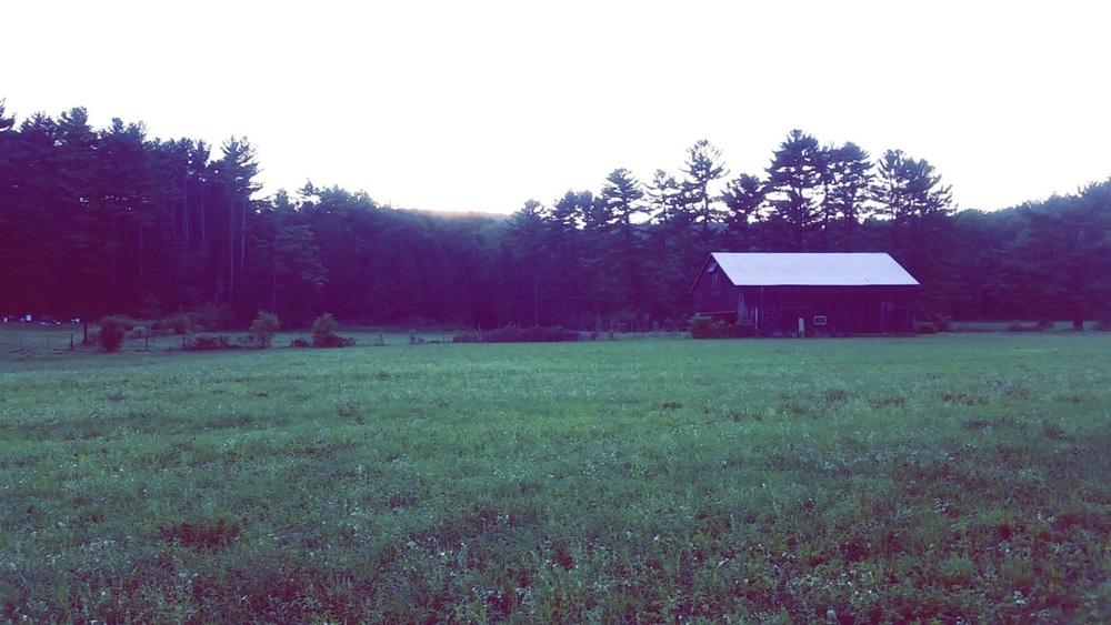 Bucolic Landscapes