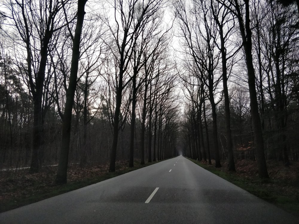 The road to Hoogerheide