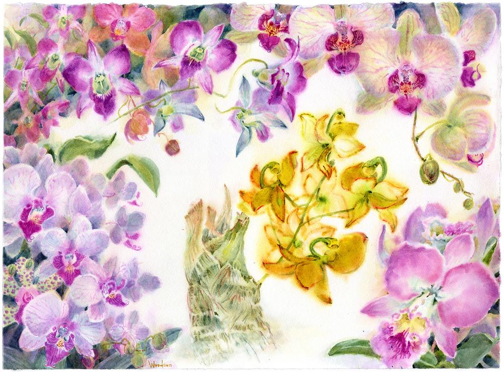 OrchidCarnivalWOODSON.jpg