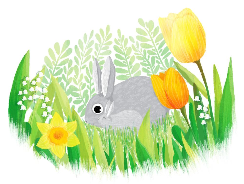 mday-bunnies.jpg