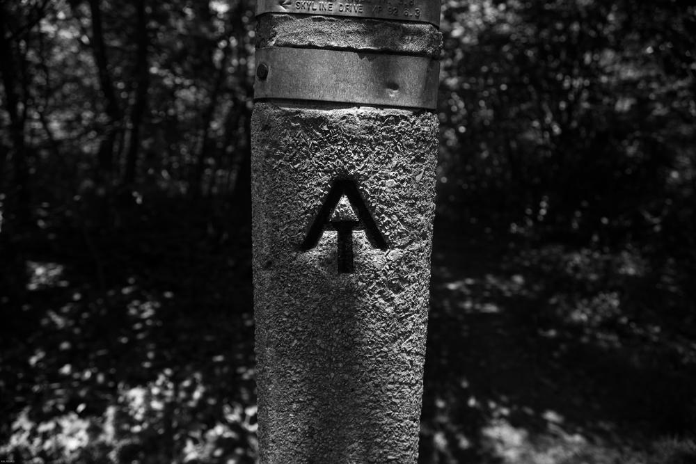 8A6A0367.jpg
