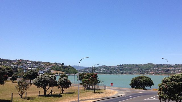 Arrived Titahi bay in preparation for @themaorisidesteps premiere tonight at the @roxycinemanz #funtanga #nofilter