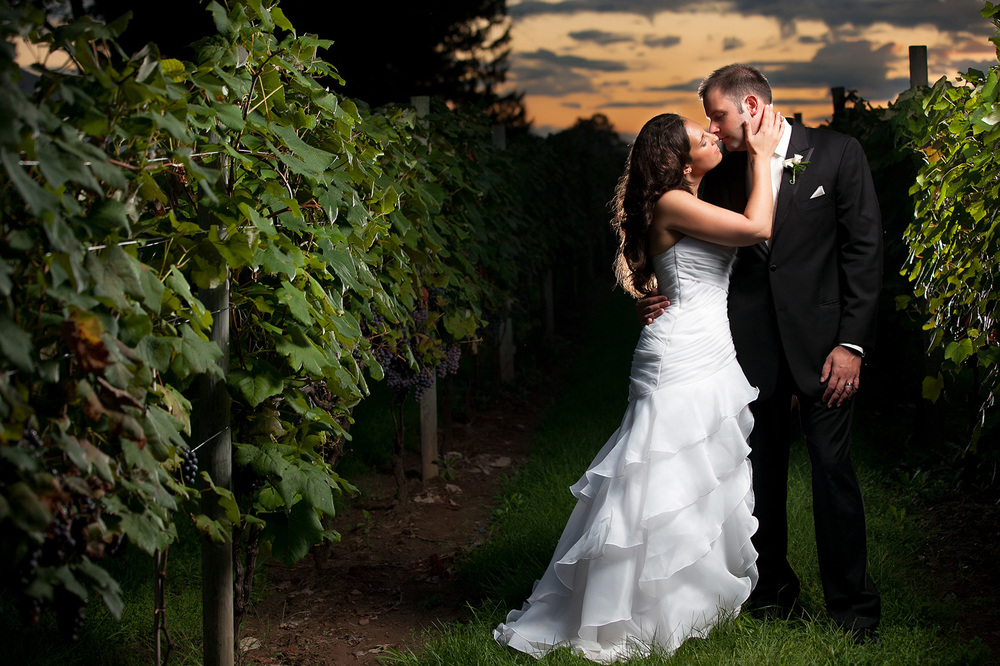 Zulufoto-www.zulufoto.com-Chicago-IL-Wedding-Photography-vineyard-marriage.jpg