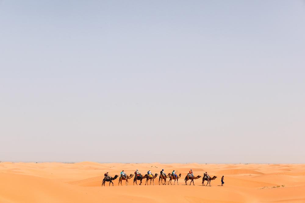 Voena_TRANSAHARA-2.jpg