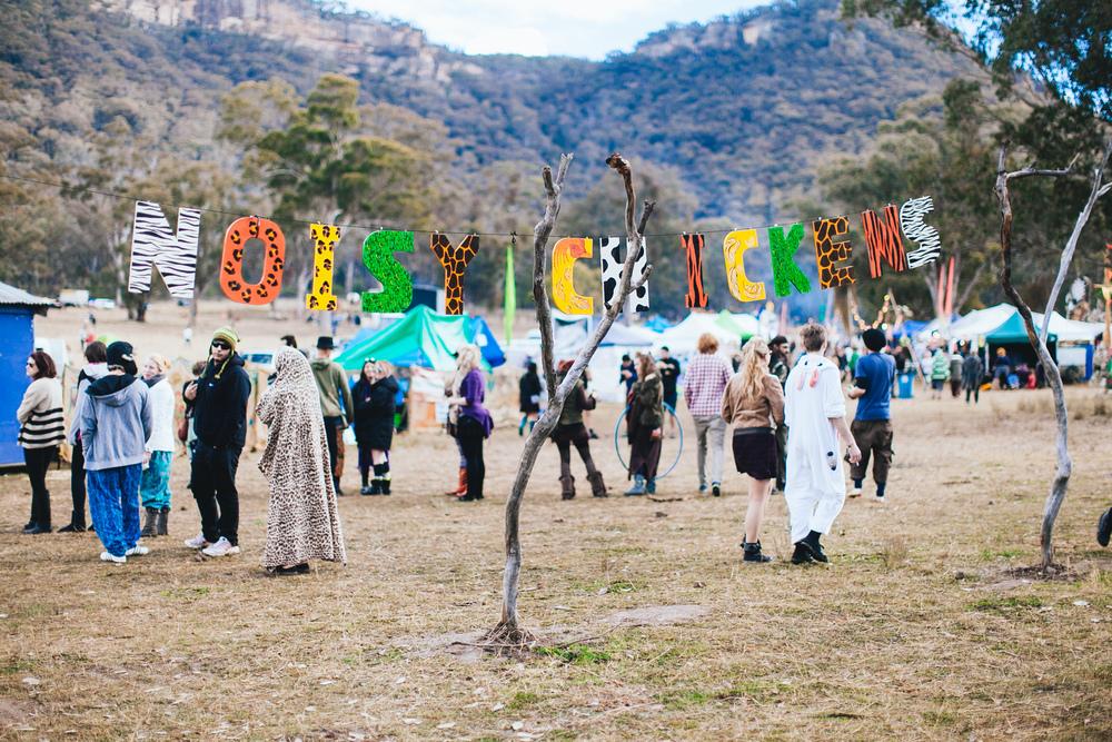 PSYFARI_FESTIVAL_BUSH_DOOF_VOENA_NSW-1.jpg