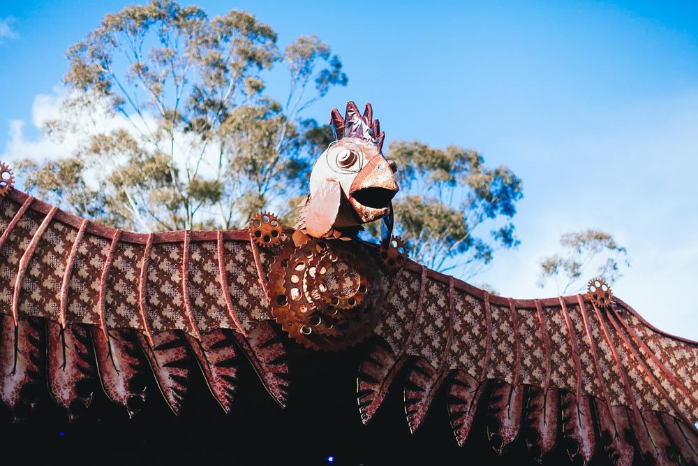 PSYFARI_FESTIVAL_BUSH_DOOF_VOENA_NSW-7.jpg
