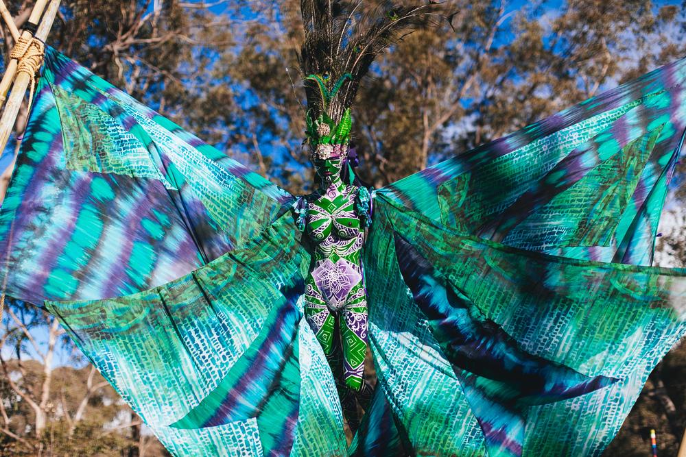 PSYFARI_FESTIVAL_BUSH_DOOF_VOENA_NSW-26.jpg