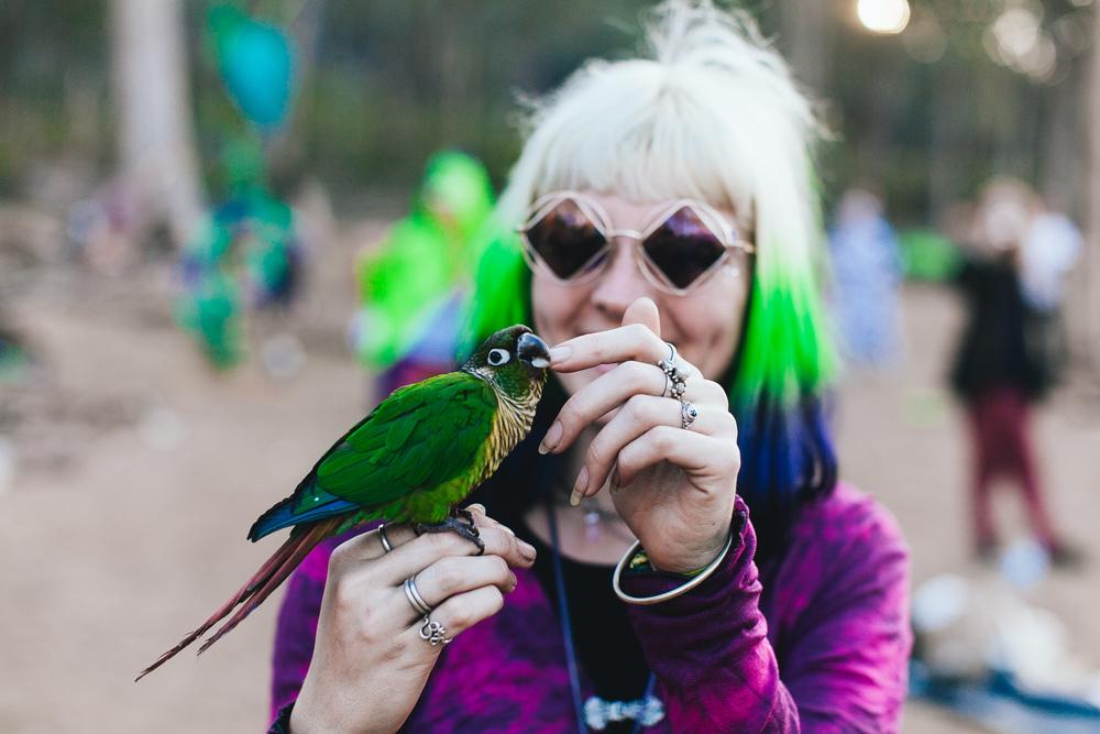 PSYFARI_FESTIVAL_BUSH_DOOF_VOENA_NSW-46.jpg