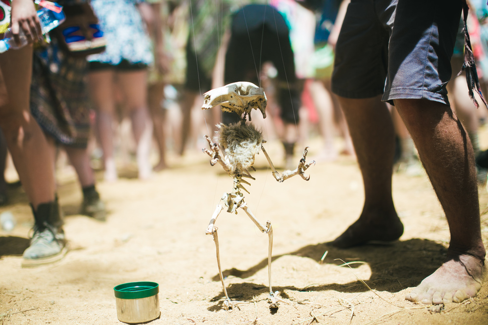 VOENA_STRAWBERRY_FIELDS_FESTIVAL_2014_PHOTOS_DOOF_AUSTRALIA-72.jpg