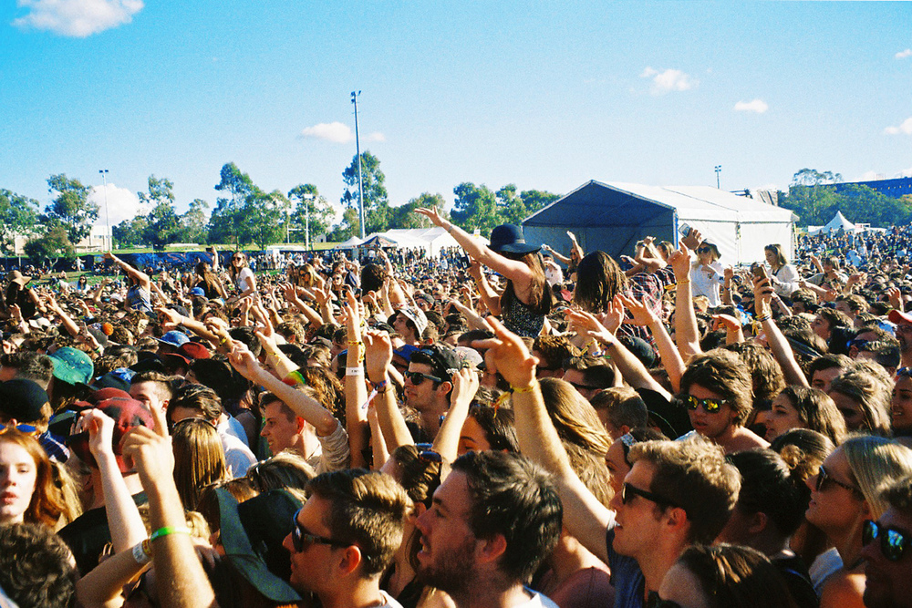 VOENA_GROOVIN_THE_MOO_CANBERRA_FILM_2015_35MM_PHOTOS-31.jpg