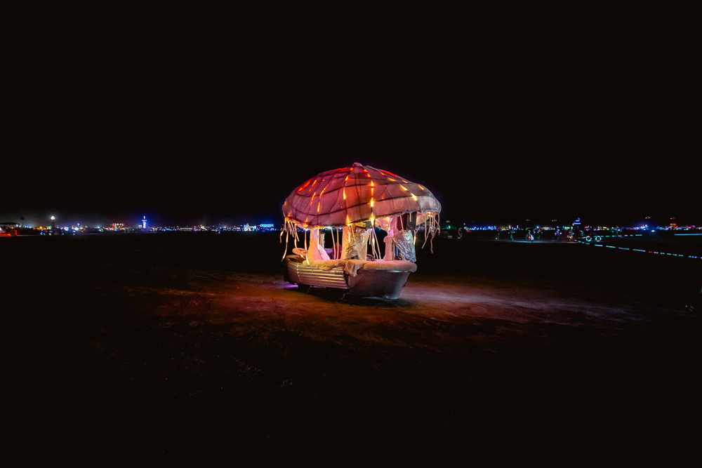 Burning_Man_2014_by_Cai_Griffin-22.jpg