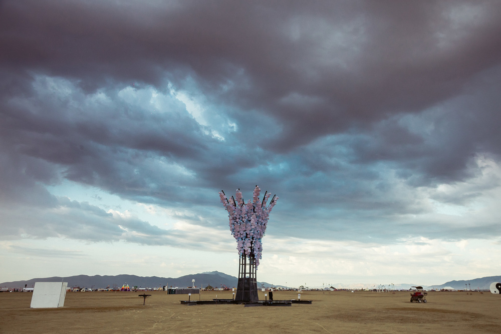 Burning_Man_2014_by_Cai_Griffin-29.jpg