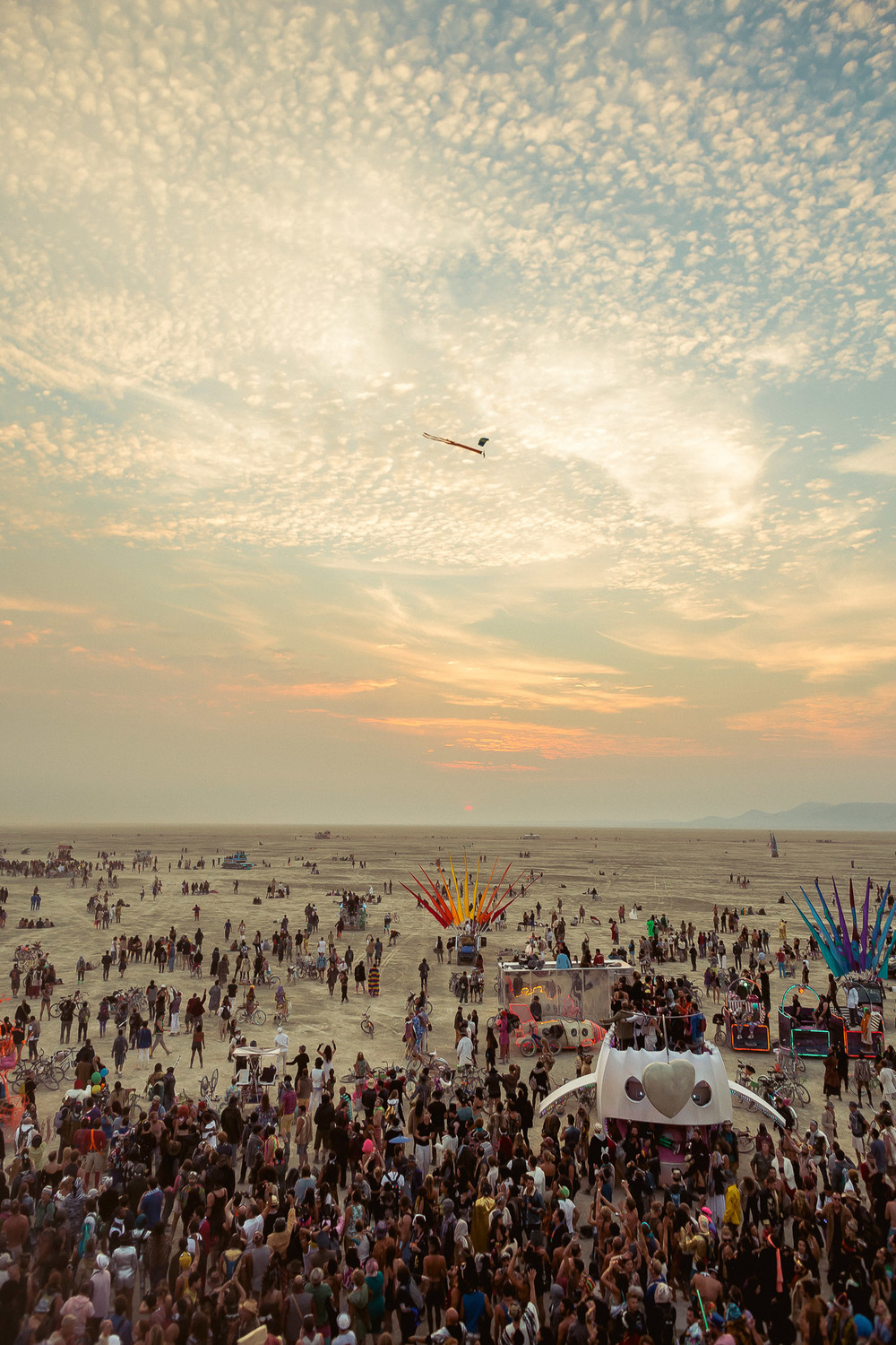 Burning_Man_2014_by_Cai_Griffin-78.jpg