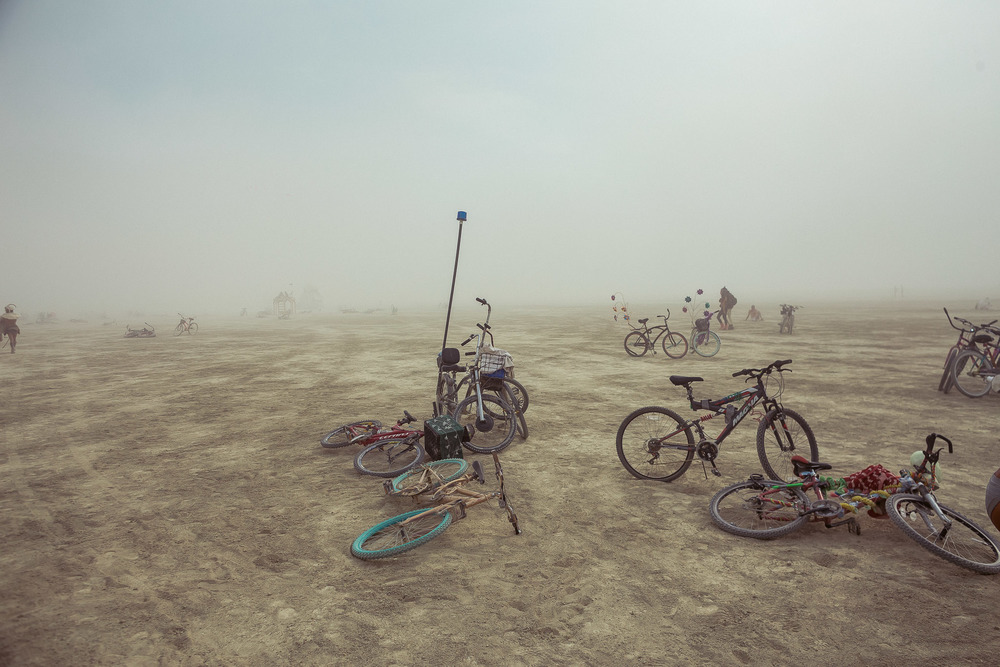 Burning_Man_2014_by_Cai_Griffin-84.jpg