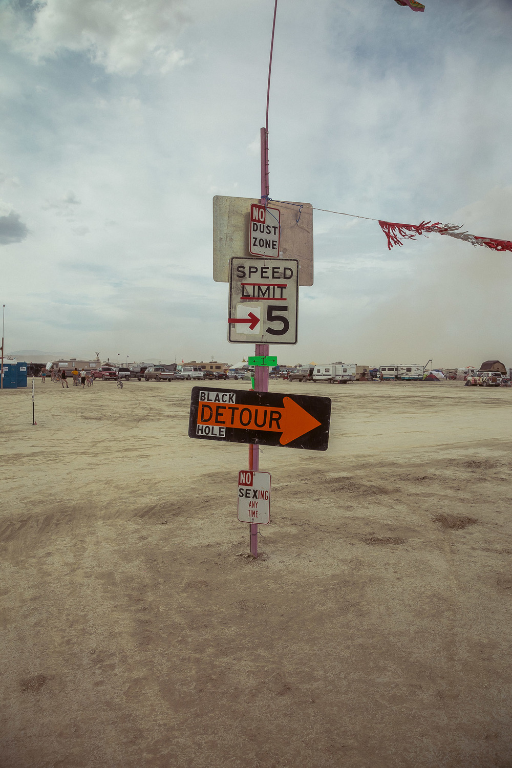 Burning_Man_2014_by_Cai_Griffin-86.jpg