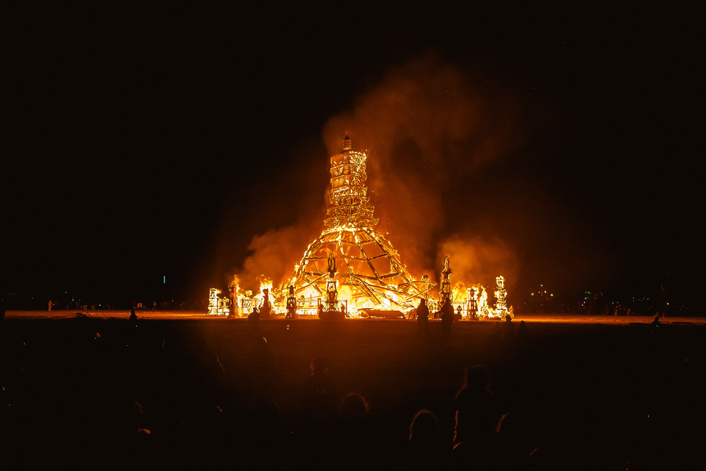 Burning_Man_2014_by_Cai_Griffin-138.jpg