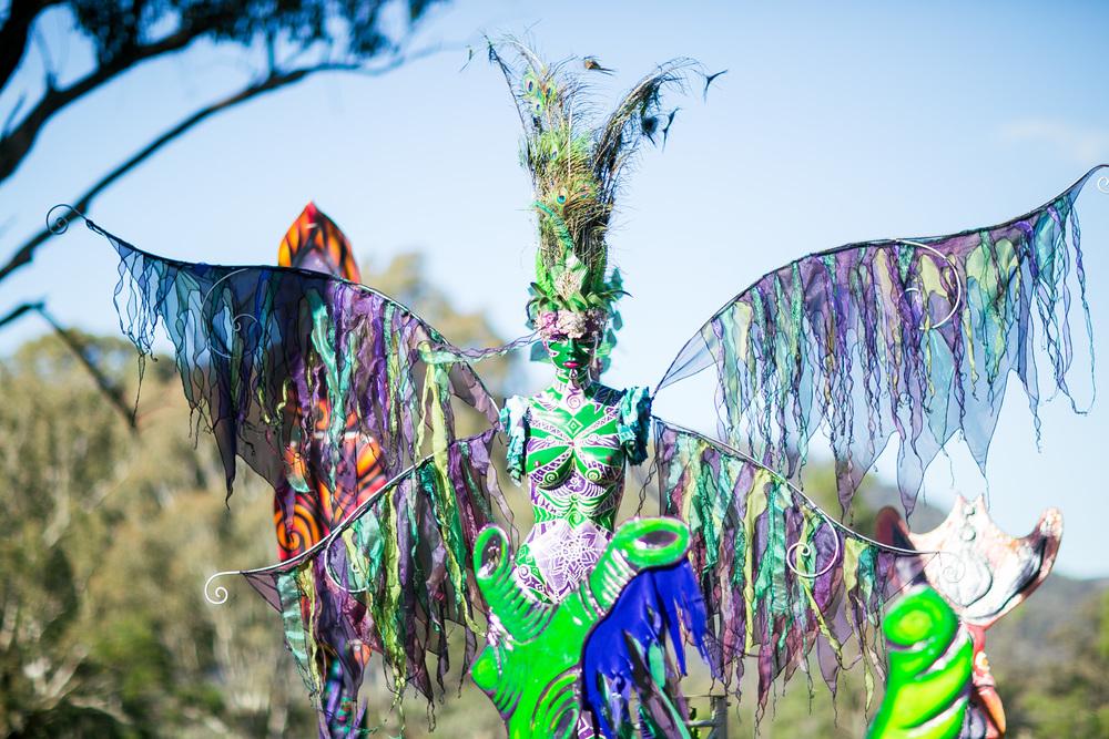VOENA_PSYFARI_FESTIVAL_BUSH_DOOF_CAMPING_2015_AUSTRALIA-17.jpg