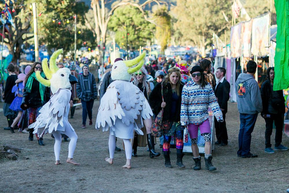 VOENA_PSYFARI_FESTIVAL_BUSH_DOOF_CAMPING_2015_AUSTRALIA-49.jpg