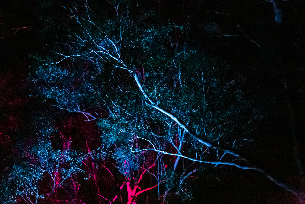 VOENA_PSYFARI_FESTIVAL_BUSH_DOOF_CAMPING_2015_AUSTRALIA-70.jpg