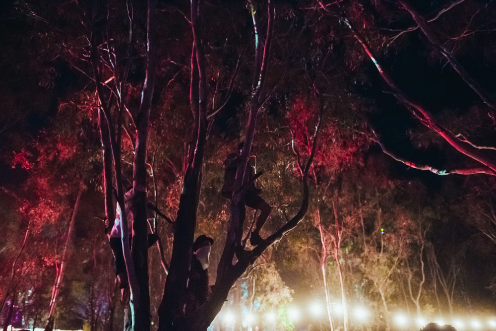 VOENA_STRAWBERRY_FIELDS_FESTIVAL_AUSTRALIA_2015_PHOTOS-180.jpg