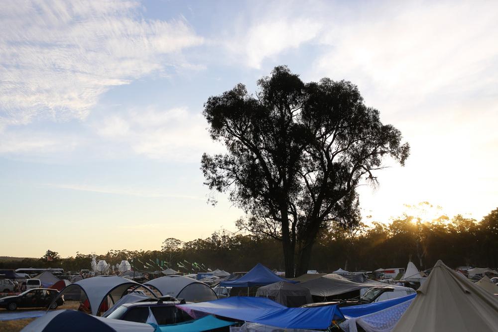 VOENA_JACK_ZEAZY_RAINBOW_SERPENT_FESTIVAL_AUSTRALIA-10.jpg