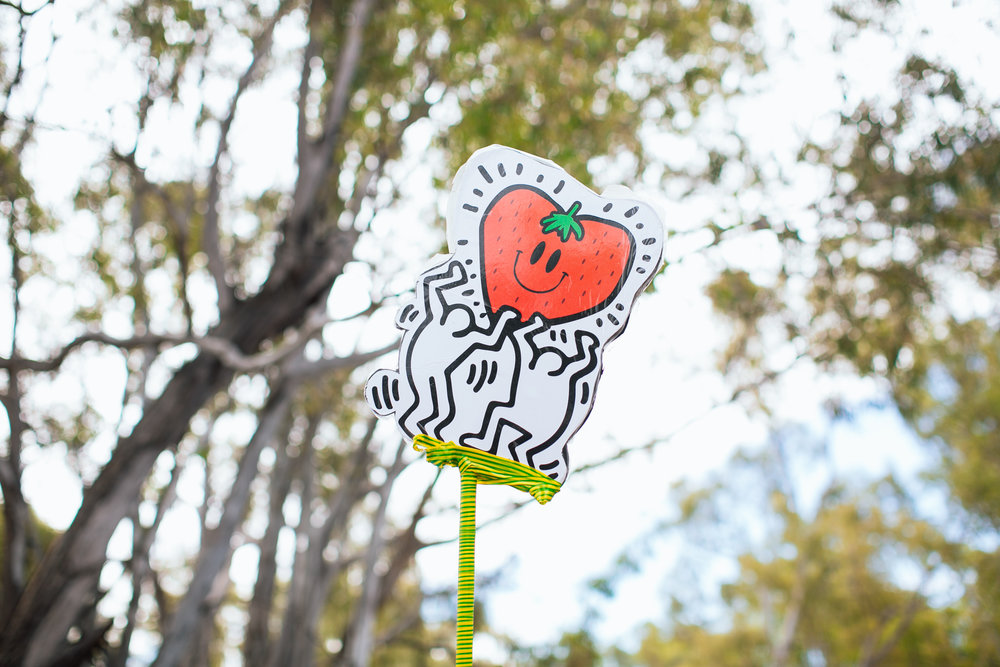 VOENA_STRAWBERRY_FIELDS_FESTIVAL_AUSTRALIA_2016-5.jpg