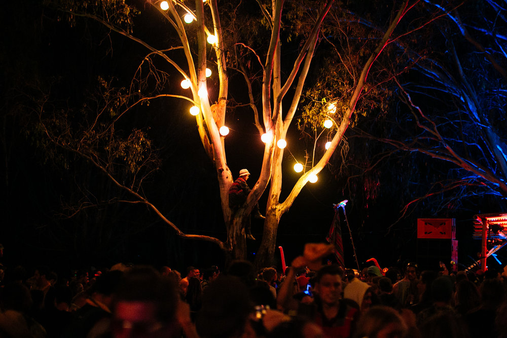 VOENA_STRAWBERRY_FIELDS_FESTIVAL_AUSTRALIA_2016-148.jpg