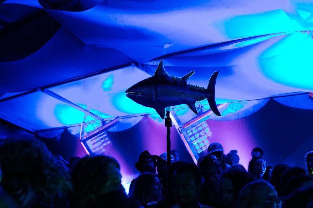 VOENA_SUBSONIC_MUSIC_FESTIVAL_2016_AUSTRALIA-168.jpg